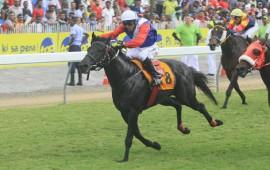 Mauritius Racing Tips - Meeting 14 - 2017