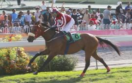 Mauritius Racing Tips - Meeting 31 - 2017