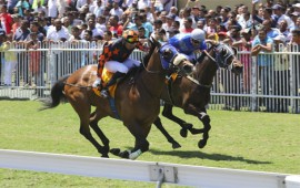 Mauritius Racing Tips - Meeting 36 - 2017