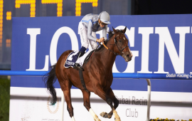 DWC CARNIVAL DAY 1 : HEAVY METAL ROCKS, BENBATL SUBLIME