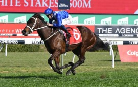 Winx waltzes to 20th Group One victory